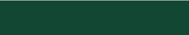 logo-opportunity-green